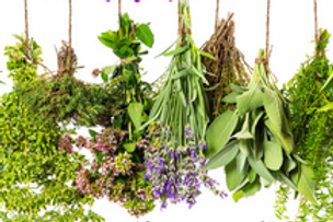 Herbs de Provence (12 oz.)