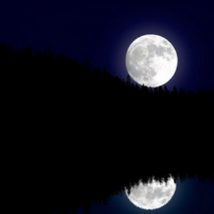 Full Moon (12 oz.)