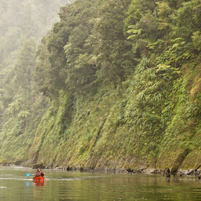 NZ'S LONGEST NAVIGATABLE RIVER - THE WHANGANUI