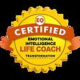 Emotional Intelligence Life Coach.png