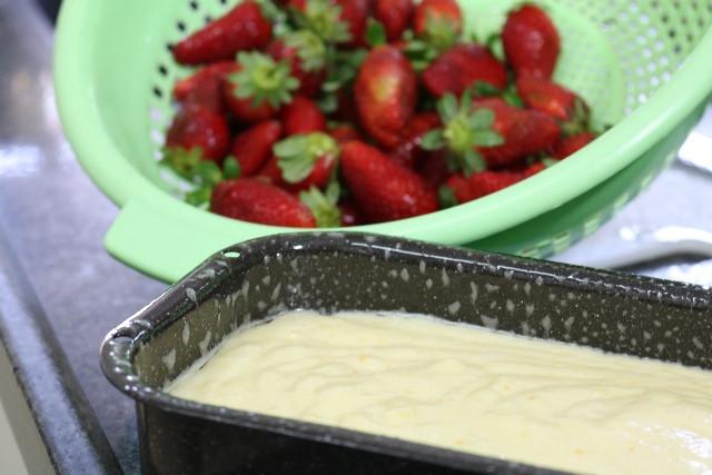 עוגת גבינה, תותים, רוקחת החלומות