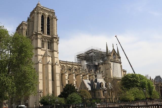 קתדרלת נוטרדאם