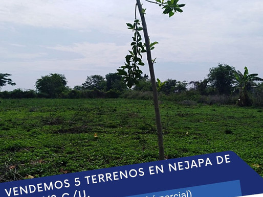 EN VENTA 5 TERRENOS DE 2,860 V2 C/U EN NEJAPA, POR EL REDONDEL INTEGRACION