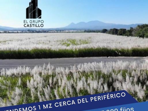 "VENDE EN SUPER OFERTA 1 MZ en ZAPOTITAN, a 150 Mt del ""NUEVO PERIFÉRICO CLAUDIA LARS"""