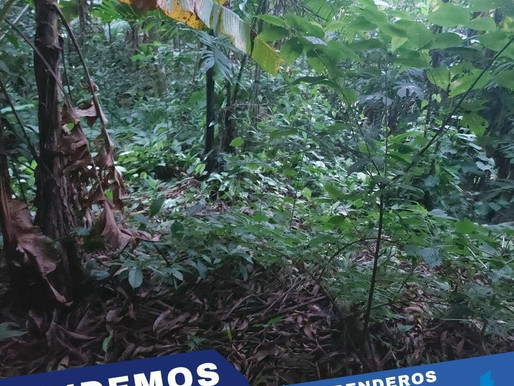 EN VENTA 6,600 V2 EN LOS PLANES DE RENDEROS CON VISTA AL MAR Y PARQUE BALBOA