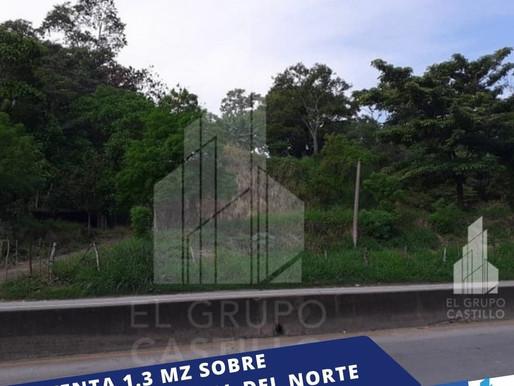 EN SUPER OFERTA VENDO 1.33 MZ A ORILLA DE CARRETERA TRONCAL DEL NORTE