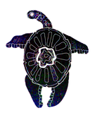 PNG TURTLE IMAGE .png
