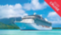 New Years Sale Cruise Side Image.png