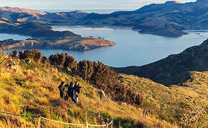 New Zealand is a fantastic destination for all ages. Whether you're looking to get your adrenalin pumping in Queenstown, enjoy a cruise in the Bay of Islands,  climbing the Franz Josef Glacier or  just chilling out exploring the many wineries - there is something for all travellers.