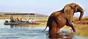 Legends-of-the-Zambezi-Helloworld-Hosted-Journeys-560x250.jpg
