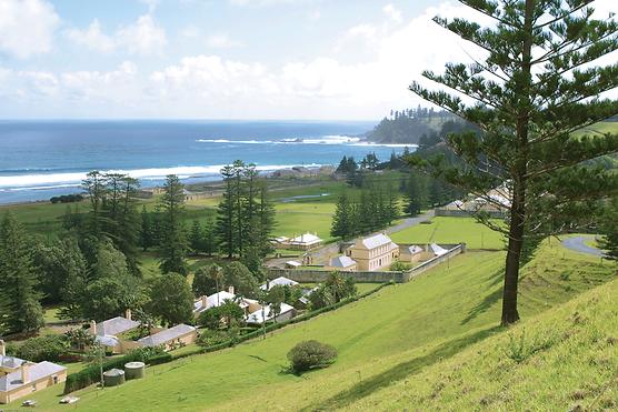 Norfolk Island Discovery