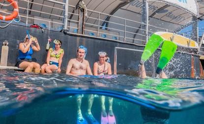 cruise-whitsundays-great-barrier-reef-41