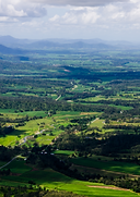 Treat your taste buds and support some local businesses on this progressive foodie & cultural tour including Eungella and the Pioneer Valley.