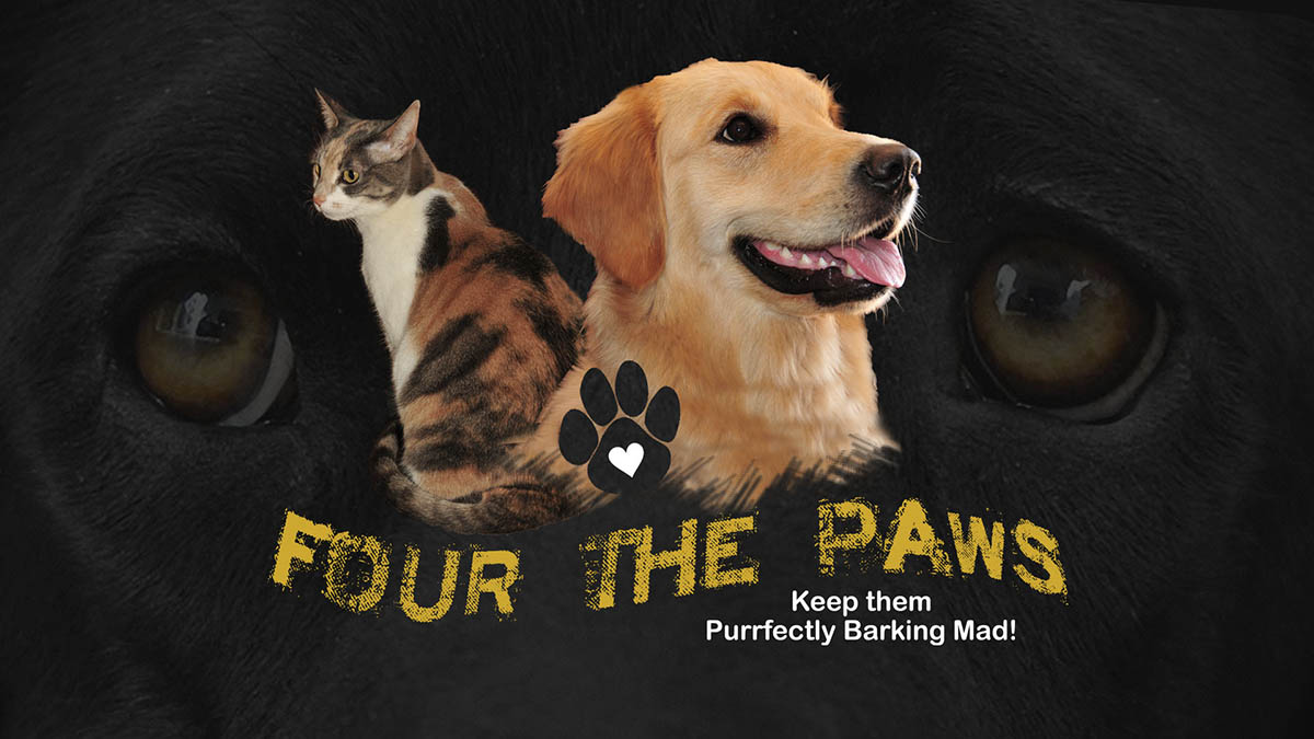 Four The Paws TV Series