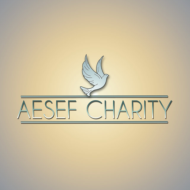 AESEF Charity Logo UP Avatar.jpg