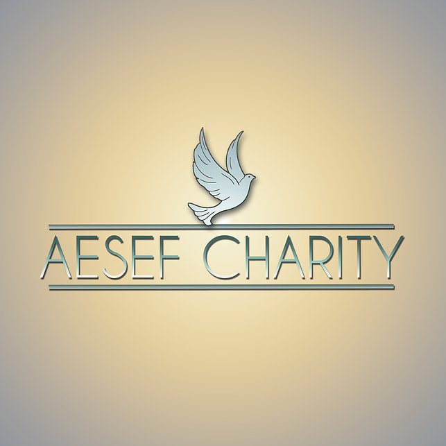AESEF Charity Logo UP Avatar.jpg