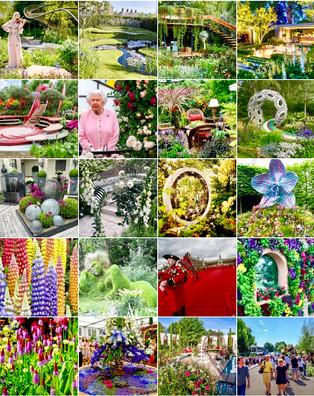 "Expoziția ,,Chelsea Flower Show"""