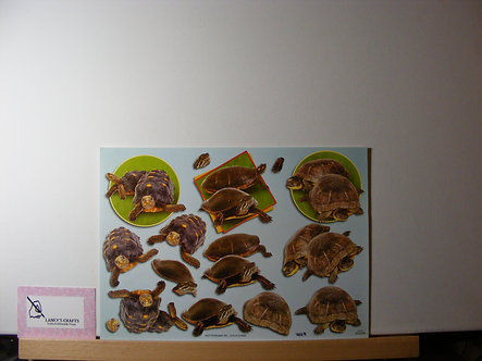 TBZ International - Tortoise & Turtle Decoupage.