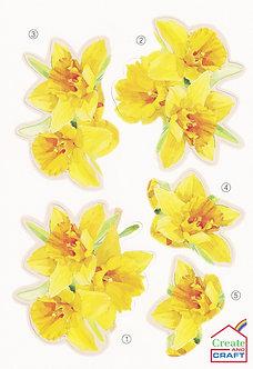 Create & Craft - A5 Daffodil Decoupage