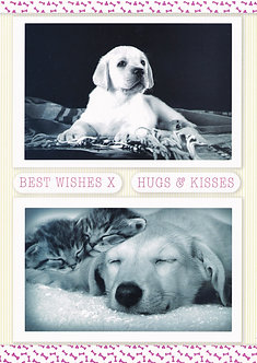 Kanban - Love Your Pets Topper Sheet.