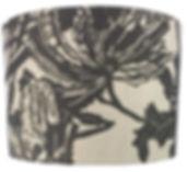 Wild Banksia