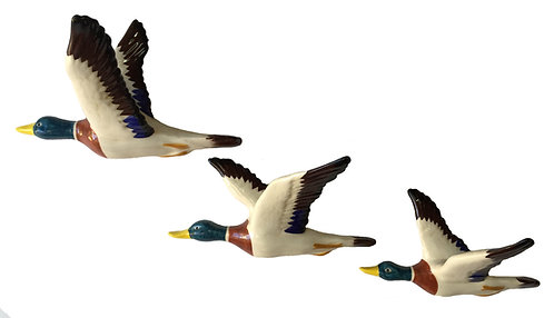3 Flying Mallard Ducks