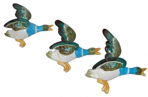 3 Flying Teal Ducks