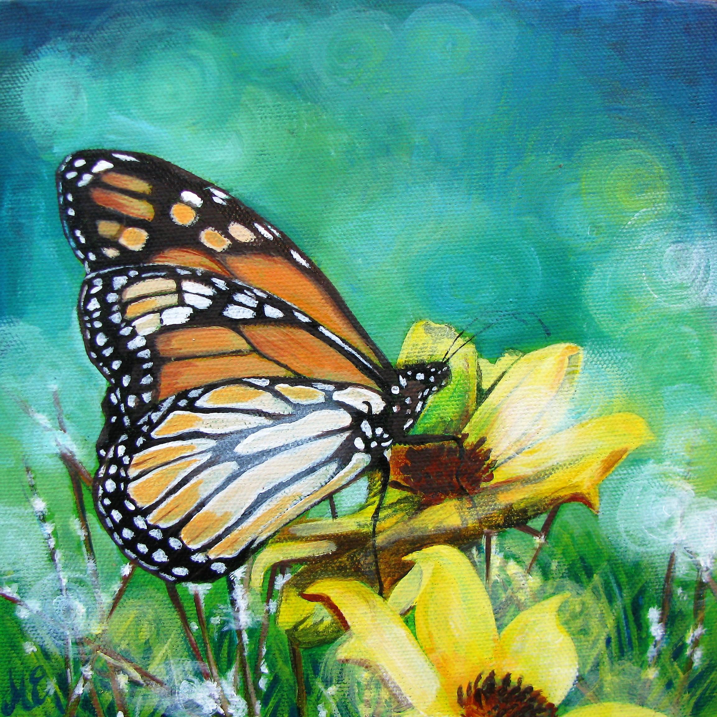 Monarch study 2