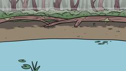 swamp BG 2