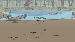 swamp BG 3