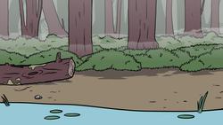 swamp BG 1