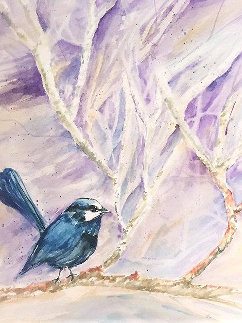 Winter Blue Wren Print