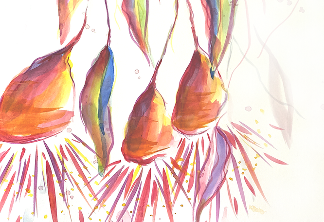 Gumnut Blooms Web Banner.png
