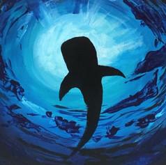 Whale Shark - Acrylic