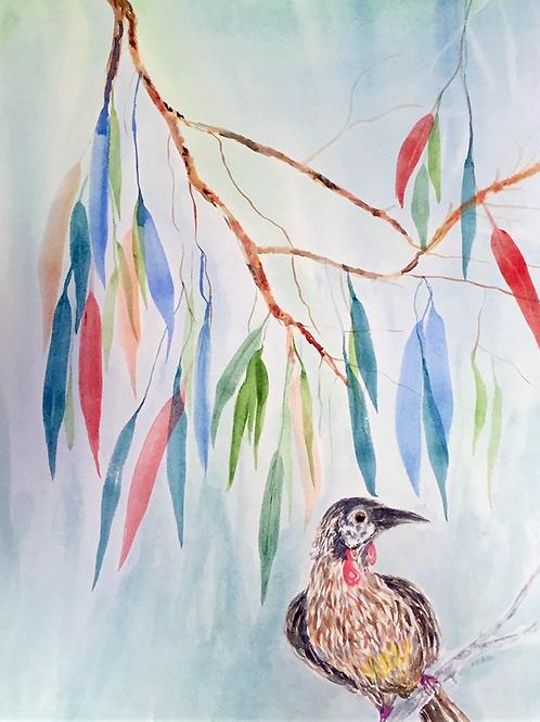 Wattlebird Painting