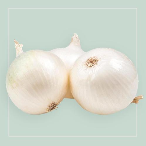Onions White - Italian kg
