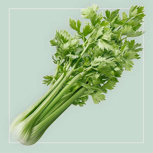 Celery Leaves - Italian each