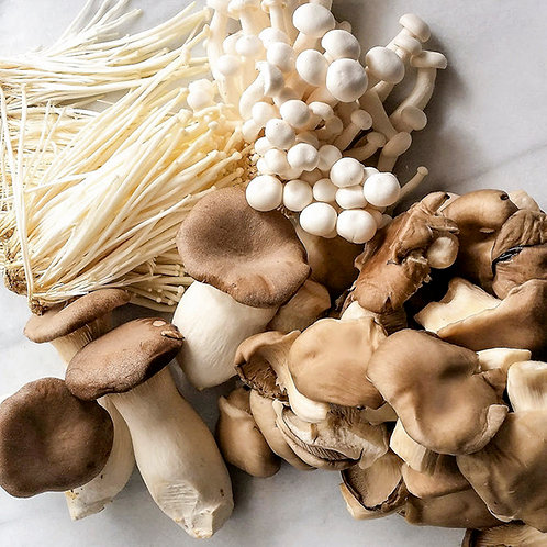 Mushrooms Mixed - Wild (cultivated)  500g