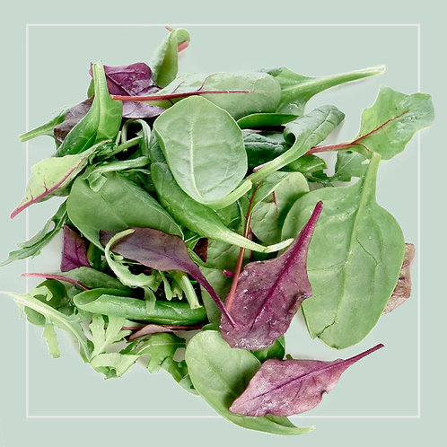 Baby Leaf Salad - Mixed 125g packet