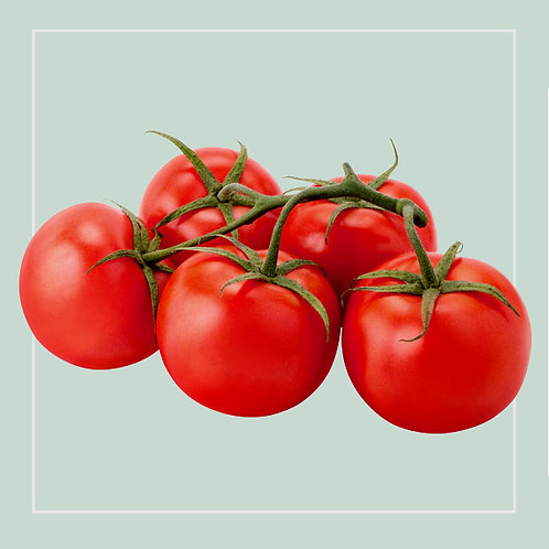 Tomatoes on the vine kg
