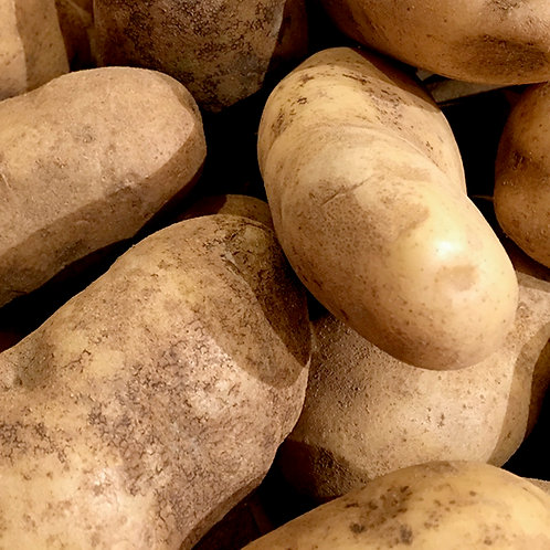 Potatoes - Gold (Unwashed) kg