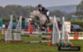 Orla grey jumping.jpeg