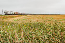A Grain Train On The Plains