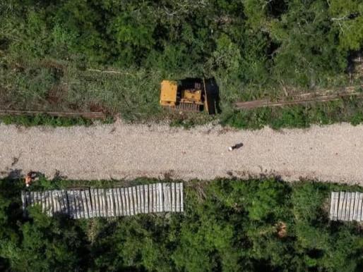 Desacata Fonatur suspensión judicial de las obras del Tren Maya, denuncian pueblos originarios