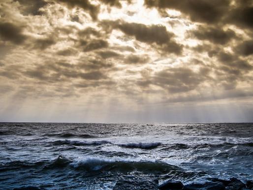 Proteger a los océanos y su diversidad, crucial para un mundo resiliente y neto cero
