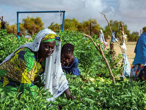 COP26 condenada al fracaso si no cambiamos el mundo: ONU
