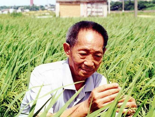 El hombre que alivió el hambre de millones de personas en el mundo