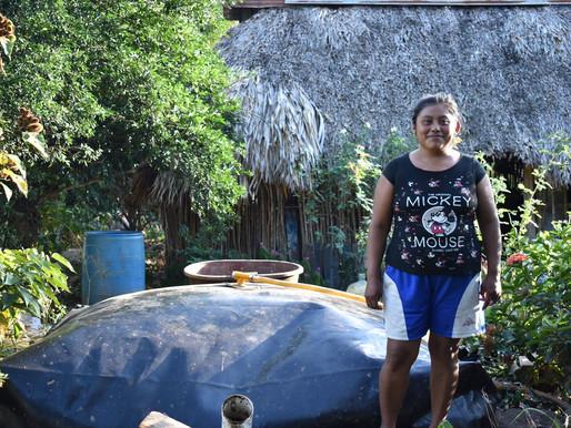 IRRI-México extiende su programa de Seguridad Alimentaria y Energética con biogás en Yucatán