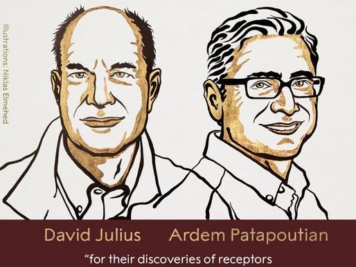 El Nobel de Medicina, a Julius y Patapoutian