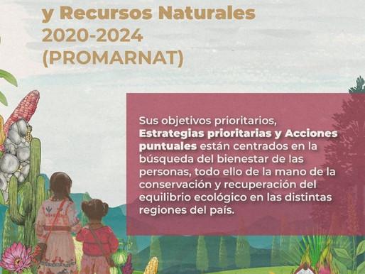 Publican el Programa Sectorial de la Semarnat 2020-2024